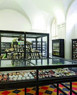 Zubní muzeum prof. Jesenského