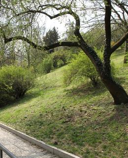 Park Nad Bělehradskou na jaře 2019