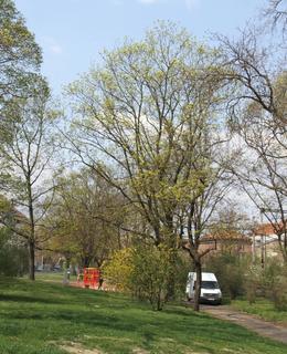 Park s venkovní posilovnou