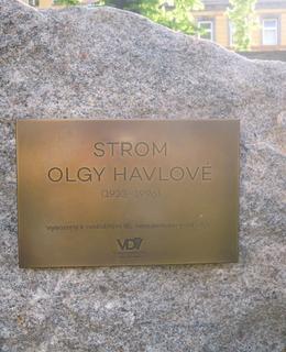 Strom Olgy Havlové, pamětní deska