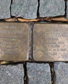 Kameny před domem (Foto Milan Polák)