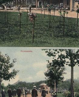 Historická pohlednice z Riegrových sadů