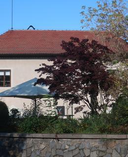 K Rotundě čp. 16 (Foto M. Polák, říjen 2020)