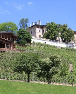 Altán s vinicí, vilou a terasou. Foto M. Polák, 2017