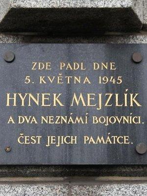 Hynek Mejzlík (autor fotografie: Milan Polák)