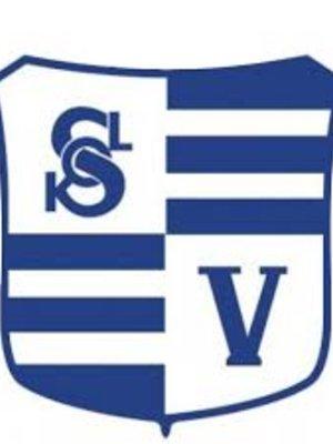 Sokol Vyšehrad logo