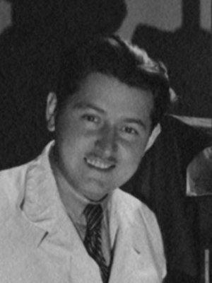 Vilém Ströminger