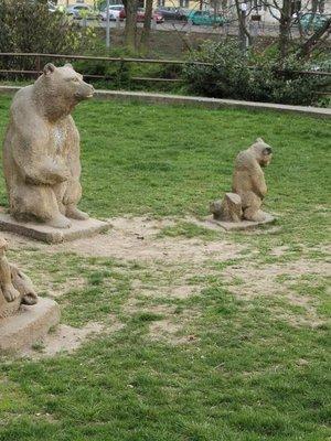 Medvědí rodina (autor fotografie: Milan Polák)