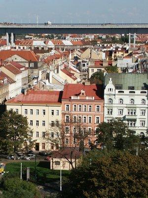 Zeleň Na Slupi z Vyšehradu (autor fotografie: Milan Polák)