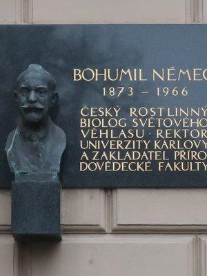 Deska Bohumila Němce