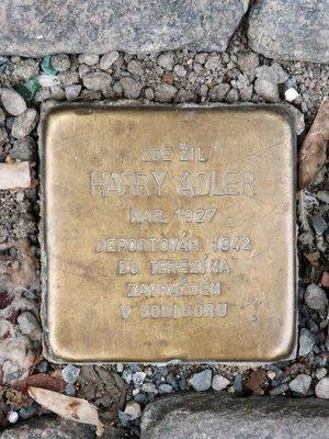 Harry Adler