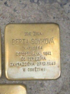 Kámen zmizelých, B. Soyková (foto D. Broncová)